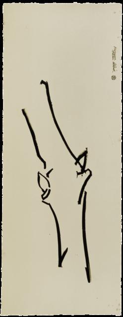 dessin de grand bourgeon n° 1