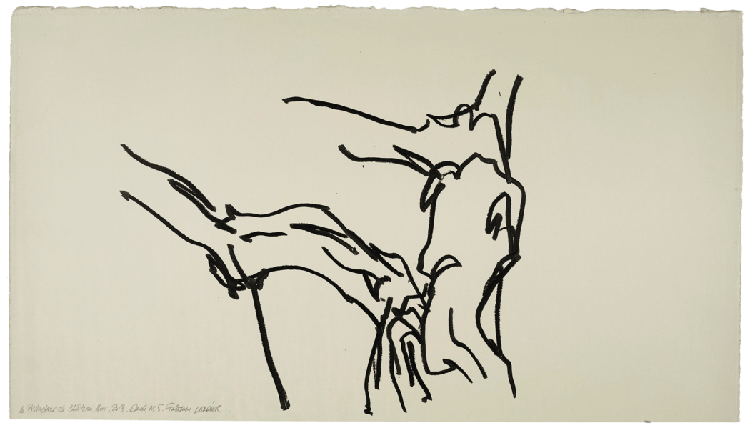 Le pistachier de château-noir, étude n°05