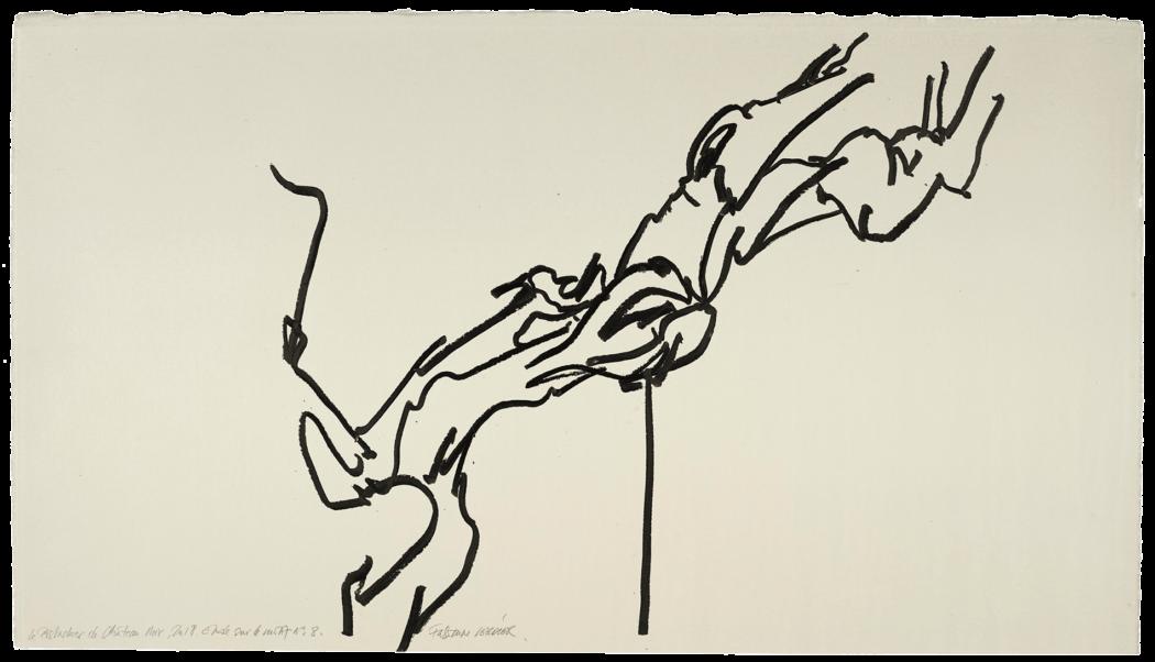 Le pistachier de château-noir, étude n°08