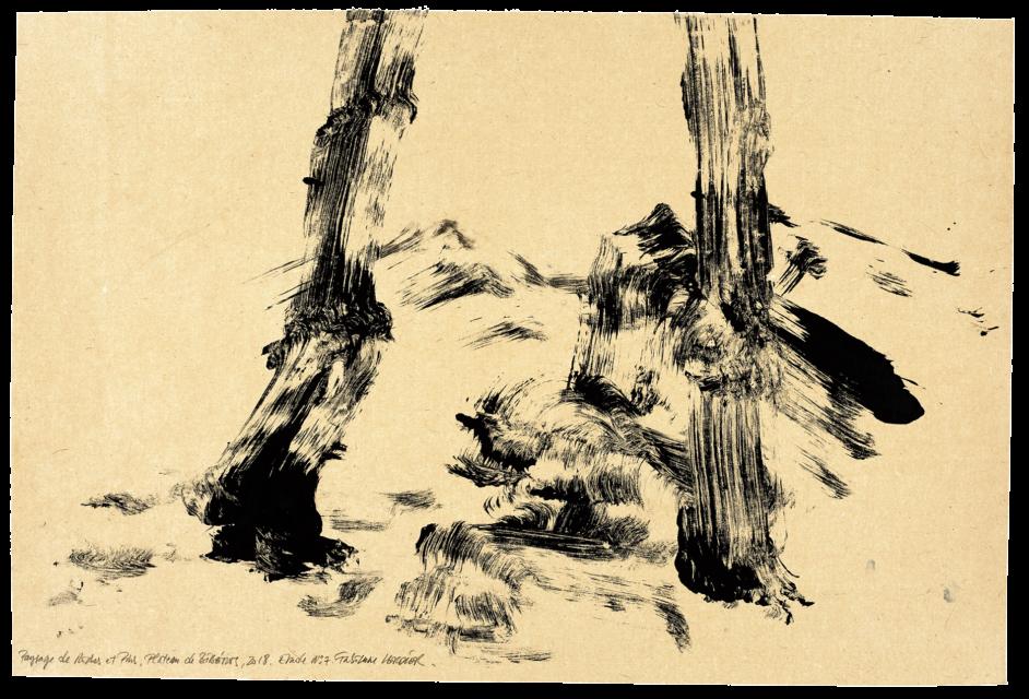 Paysage de roche et de pins, plateau de Bibémus, étude n07