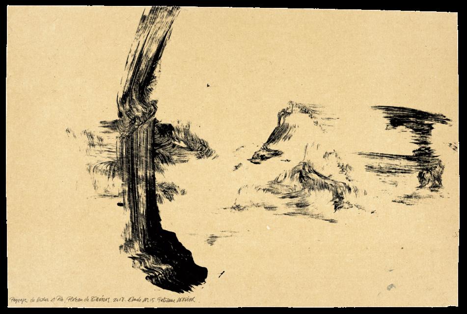Paysage de roche et de pins plateau de Bibemus, étude n°15