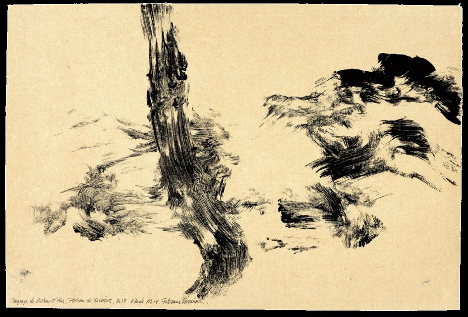 Paysage de roche et de pins plateau de Bibemus, étude n°17