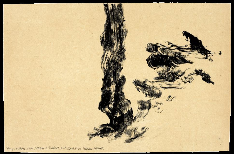Paysage de roche et de pins plateau de Bibémus, étude n°21