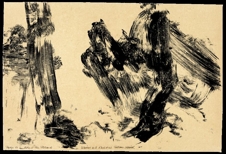 Paysage de roche et de pins plateau de Bibémus, étude n°22