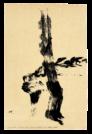 Arbre et rocher, sur les chemins de Bibémus, étude n°01