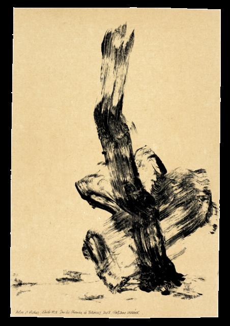 Arbre et rocher, sur les chemins de Bibémus, étude n°08