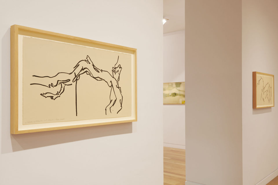 Fabienne Verdier -  Sur les terres de Cézanne